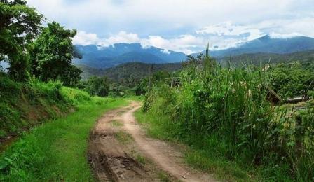 Doi_Suthep-Pui_National_Park