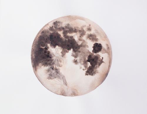 Desert Sands Moon - Stella Maria Baer