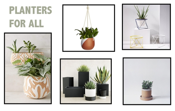 Planters for All